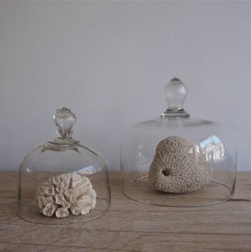 VICTORIAN CLOCHES WITH ETCHED HANDLES