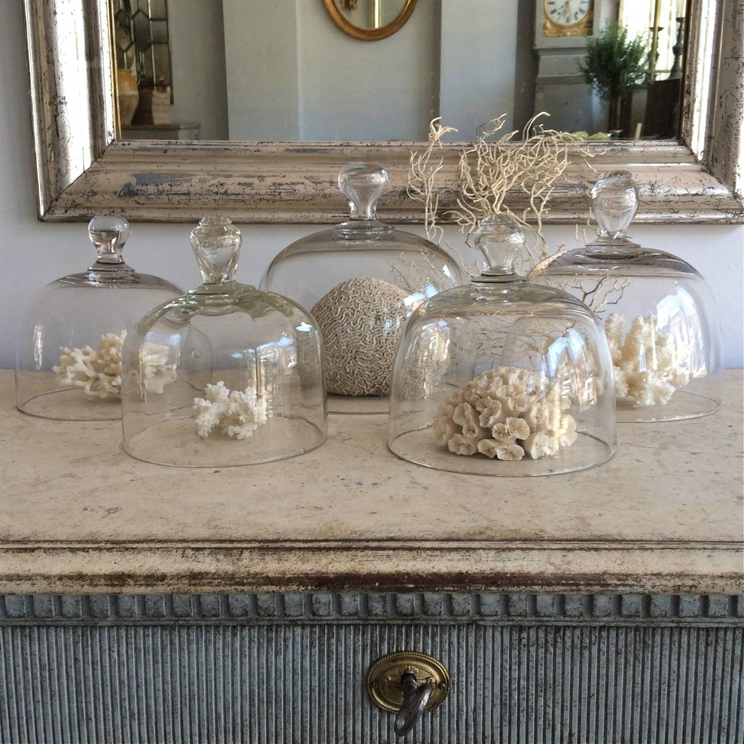 FINE COLLECTION OF FRENCH GLASS CLOCHES