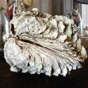 COMPLETE SOUTH PACIFIC GIANT CLAM SHELL - picture 6