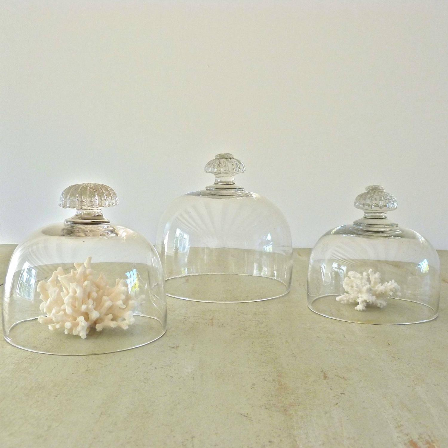 SET OF THREE 19TH CENTURY FRENCH GLASS CLOCHES