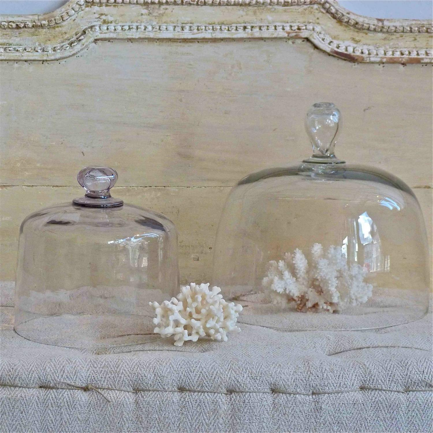 TWO 19TH CENTURY VICTORIAN GLASS CLOCHES