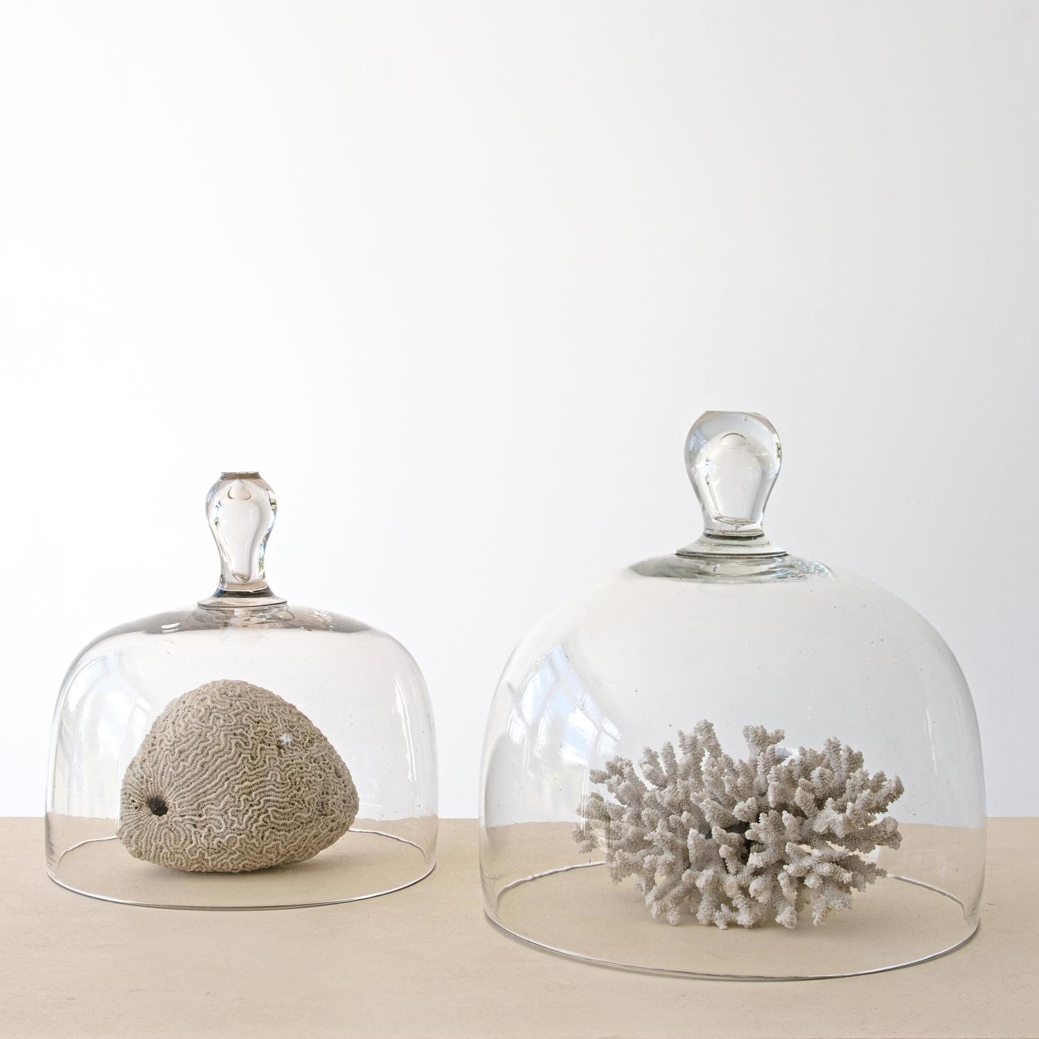 ANTIQUE FRENCH CLOCHES